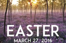 Easter 2016 Postcards
