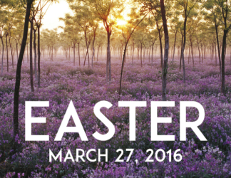 Easter 2016 Postcards