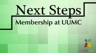 Next Steps Web Banner