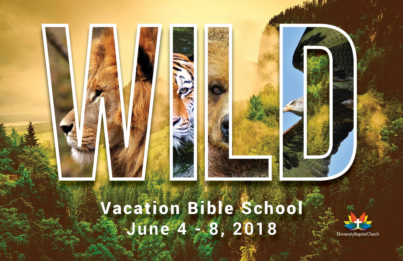 going into the wild vbs 2018 postcard  u2013 robert neill carter